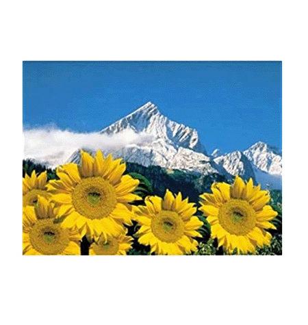 Puzzle 1000 Alpes Bávaros