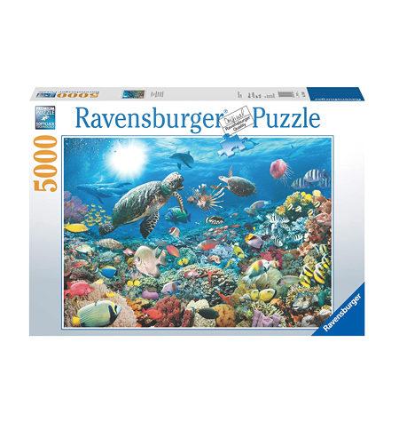 Puzzle 5000 Vida en el Arrecife
