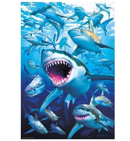 Puzzle 500 Tiburones